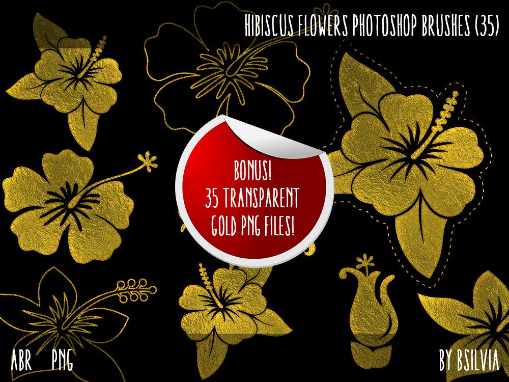 Hibiscus Flowers Photoshop Brushes Set Transparent Pngs And Bonus Gold Pngs Floral Photoshop Brushes Digital Scrapbookin With Images Photoshop Brushes Hibiscus Flowers
