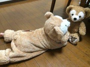 【型紙有】赤ちゃん・子供用ダッフィー着ぐるみの簡単作り方大公開