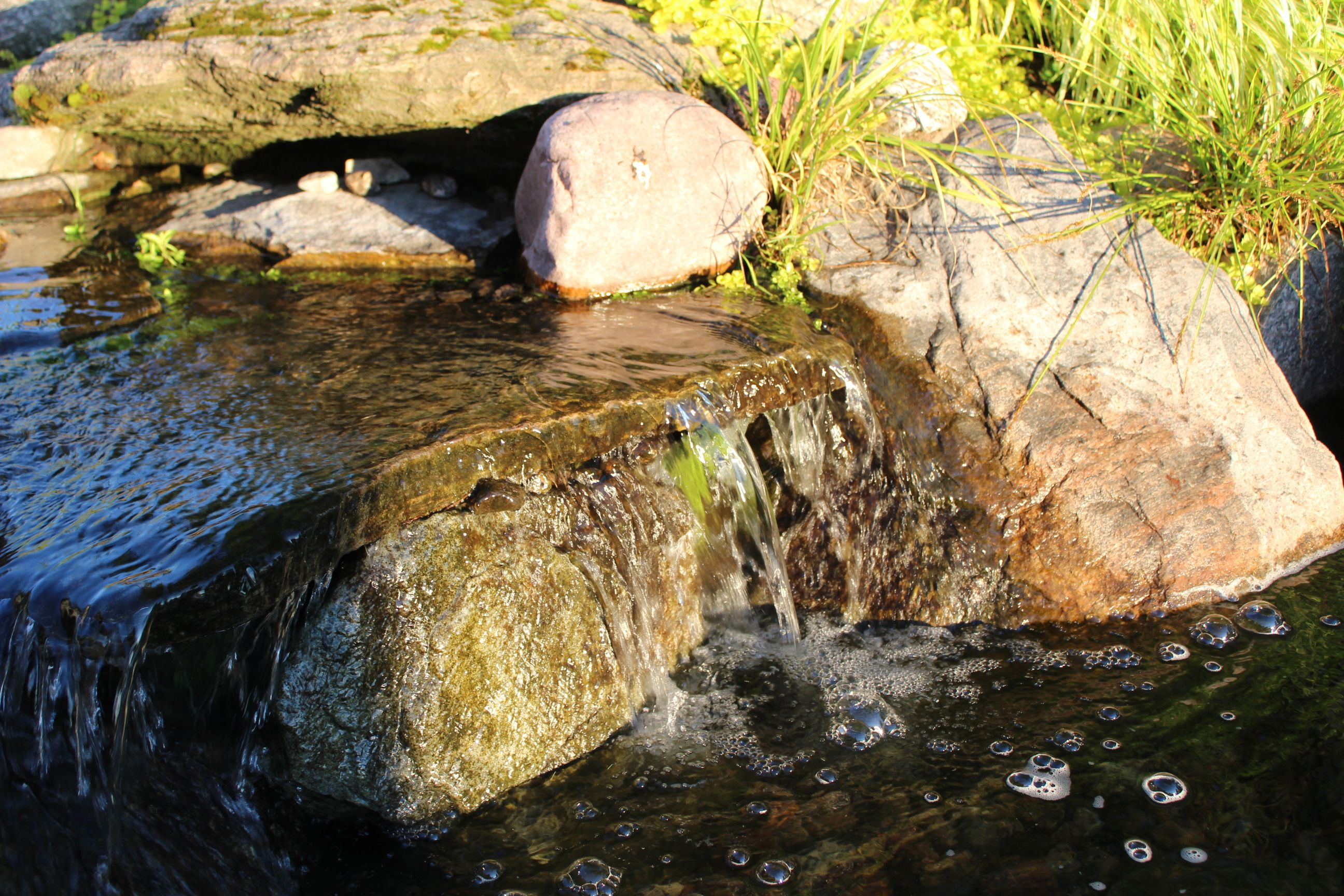 stream waterfall | Natural swim ponds | Pinterest | Natural swimming ...