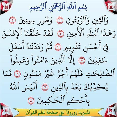 سورة التين Surah Al Quran Quran Surah Quran Verses