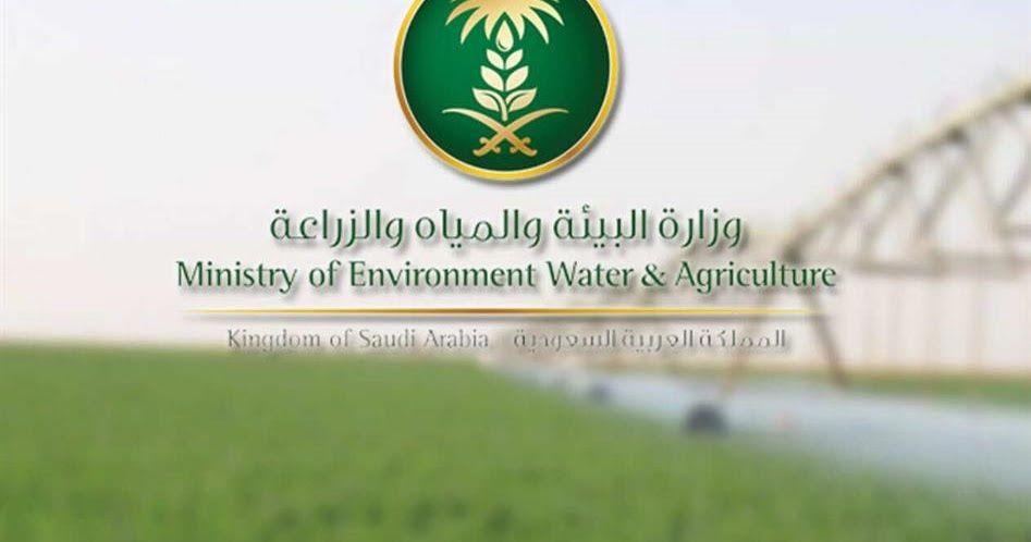 البيئة 9 أشهر مهلة لتقديم طلبات تمل ك الأراضي المخصصة وإلا فسيتم سحب التخصيص دعت وزارة البيئة والمياه وزارة البي Environment Sport Team Logos Agriculture
