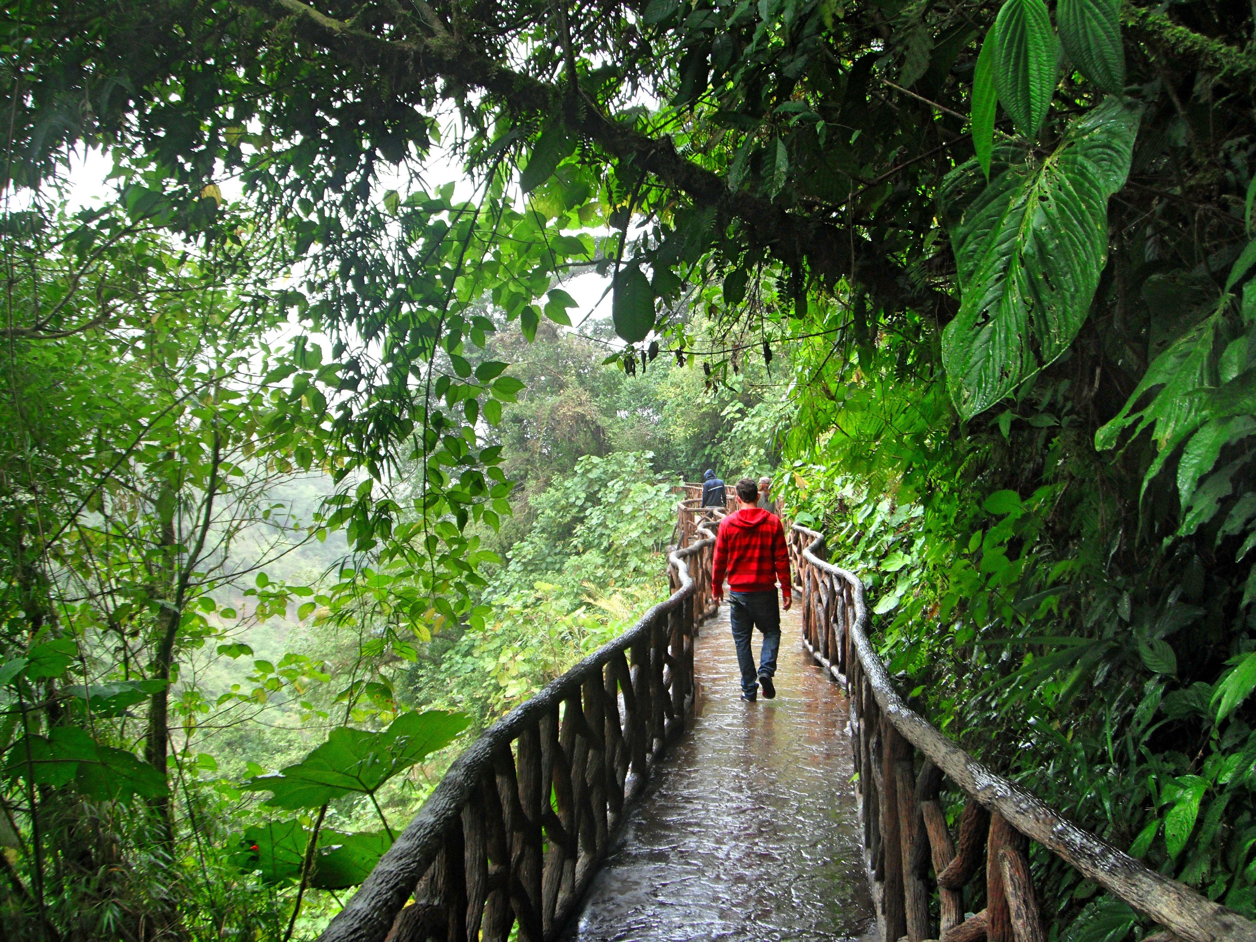 3805d498cf8ac34fc8705e381fb64ae2 - La Paz Waterfall Gardens Tour From San Jose