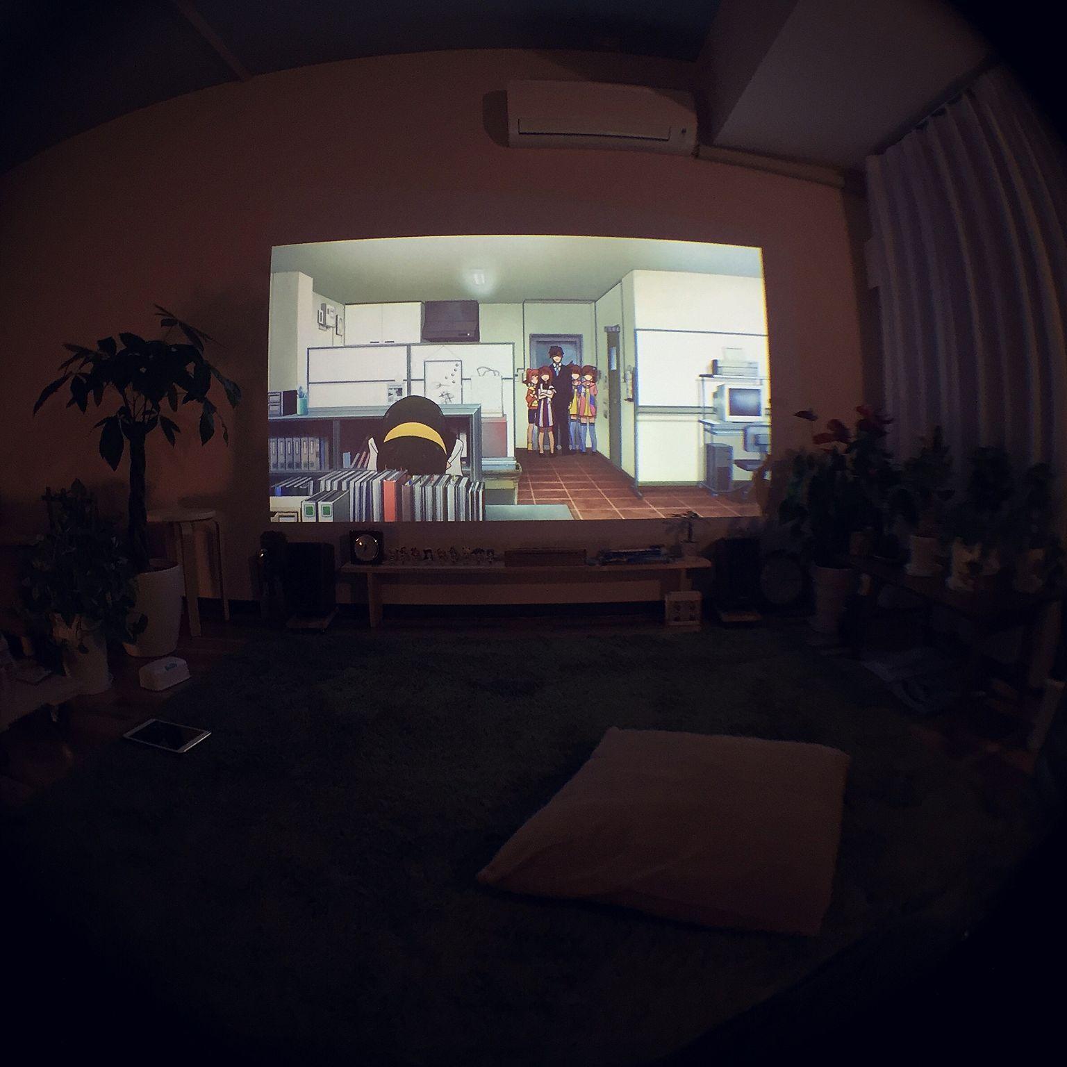 壁 天井 プロジェクター 観葉植物 一人暮らし 賃貸 などのインテリア