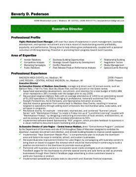 sample executive director resume