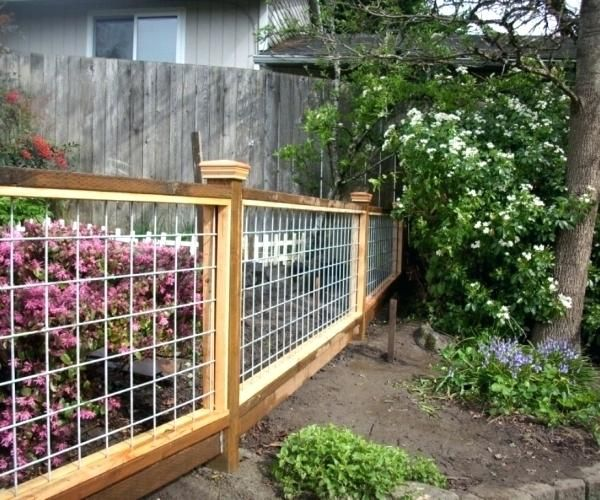 Hog Wire Panels Medium Size Of Indoor Choosing Interior Houses As Wells As Image Hog Wire Fence Panels Hog Wire Backyard Fences Fence Design Cattle Panel Fence