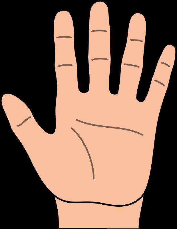 hand clipart pinterest hand clipart rh pinterest com handshake clipart clip art of a hand reaching up