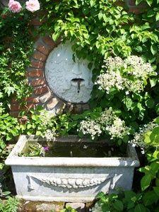 Die Kletterhortensie Begrunt Den Brunnen Von Der Einen Seite Von Der Anderen Seite Kommen Clematis Viticella Etoile Violett Und Die Ros Garten Wasser Im Garten Und Pflanzen