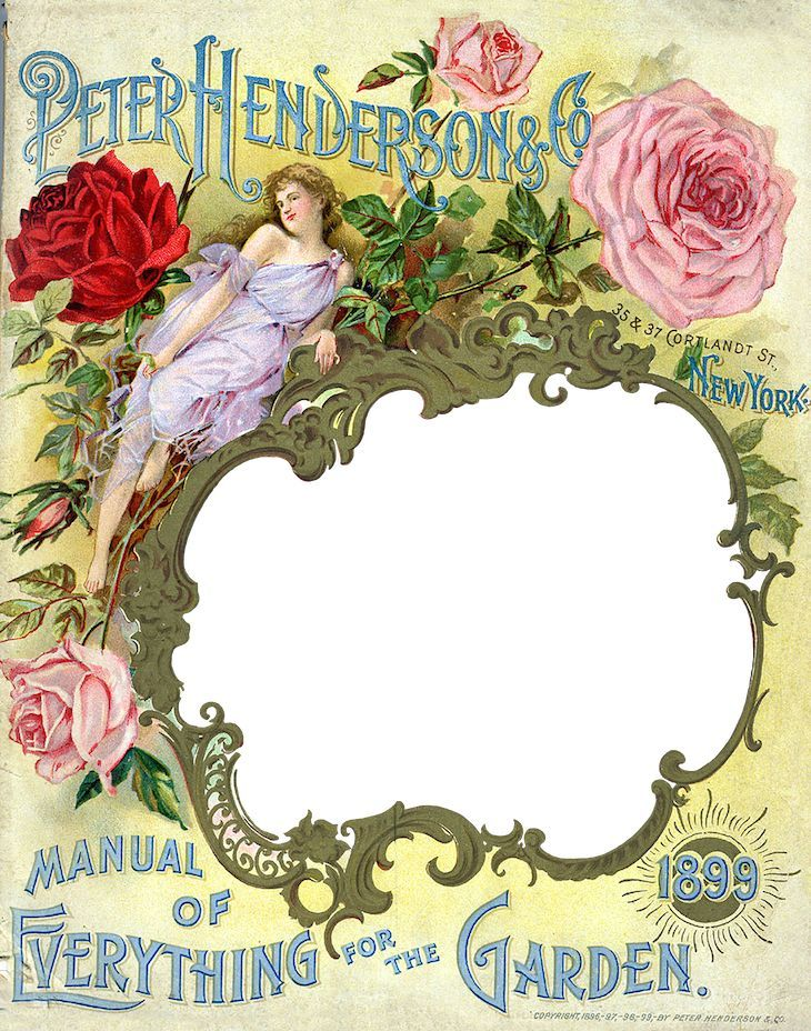 Wings of Whimsy Antique Seed Catalog Reinvented 1899