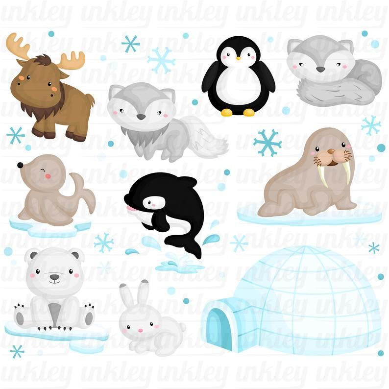 Arctic Animal Clipart Cute Animal Clip Art Wild Animal Free Svg On Request In 2021 Animal Clipart Cute Animal Clipart Animal Clipart Free