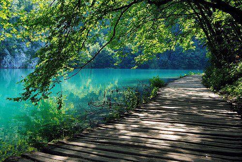 afbeeldingen van de natuur