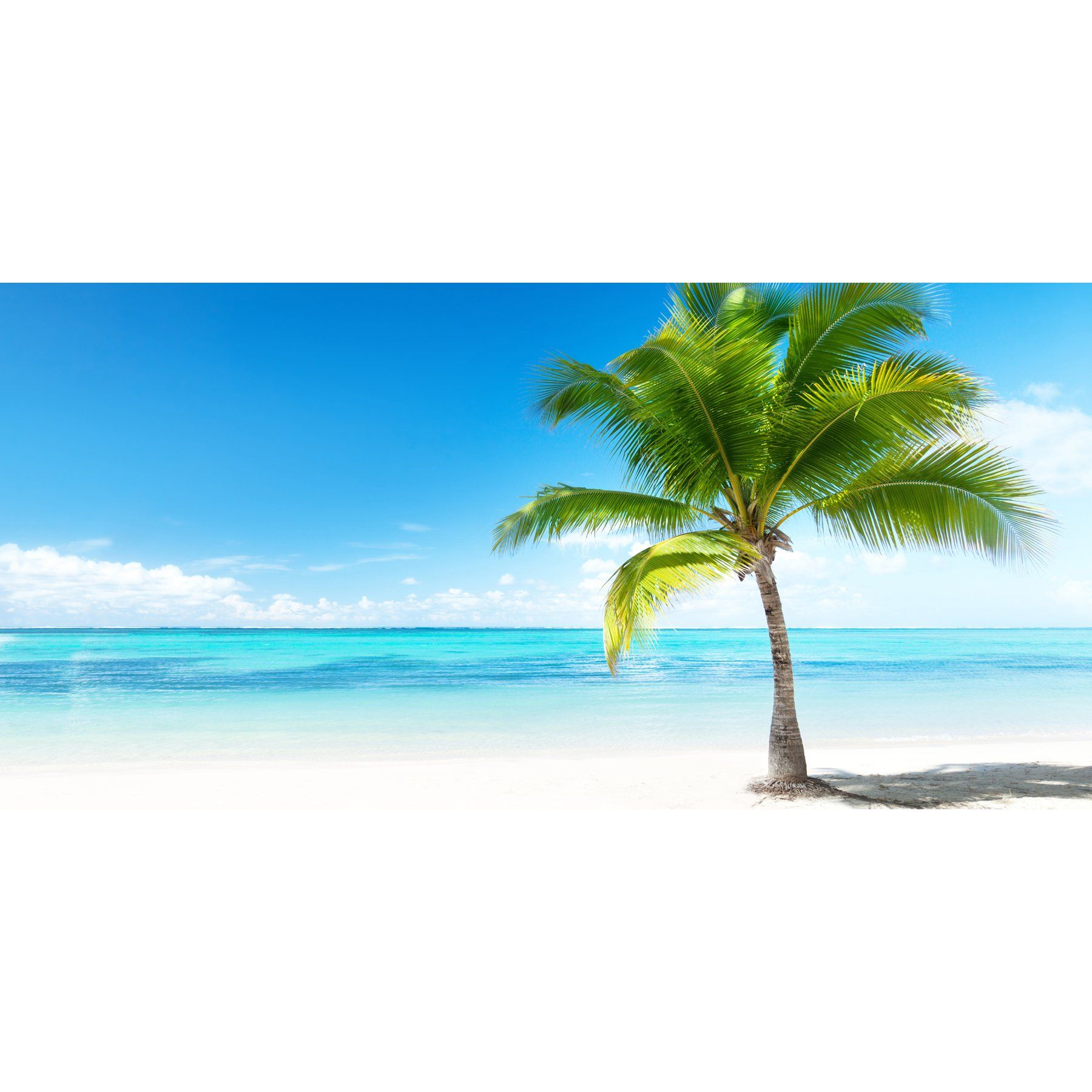 This Tropical Wall Decal Displays A Stunning Panoramic Beach Scene