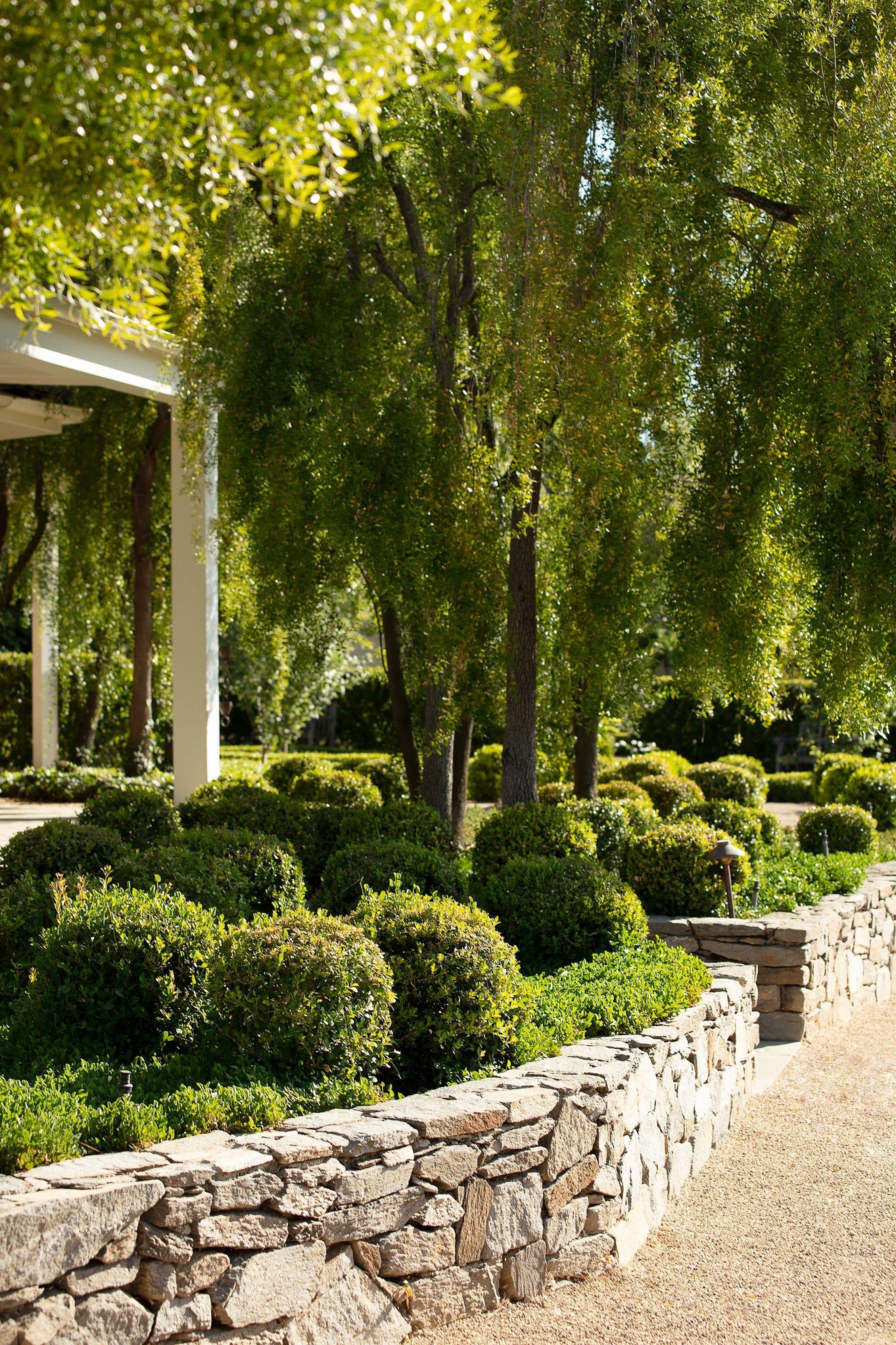 """Paul Hendershot Design, Inc #walkwaystofrontdoor All pathways lead to the front door. Project Name: """"Hamptons in a Drought."""" #landscapedesign by #paulhendershotdesign paulhendershotdesign.com & in collaboration w/Kathy Fisher #landscapedesigner #topiary #topiaries #curbappeal #garden #gardendesign #jardin #garten #dwell #frontyard #path #pathway #driveway #walkway #exterior #exteriordesign #landscape #homedesign #homeimprovement #home #house #outdoorliving #courtyard #lifestyle #walkwaystofrontdoor"""