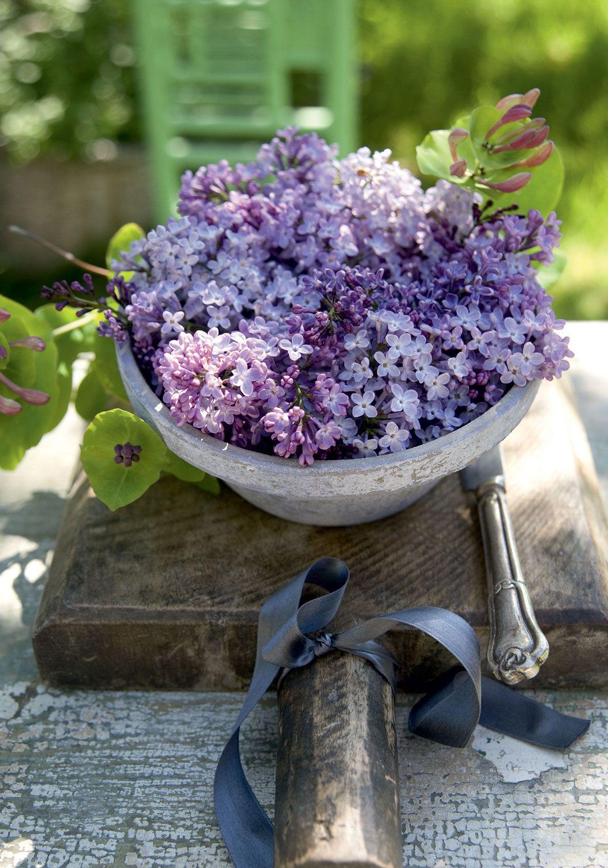 Kaada kylmää vettä syvään kulhoon. Leikkaa syreenien varret sopivan mittaisiksi. Nypi lehdet varsien alaosasta. Kerää syreenit tiheäksi kimpuksi, aseta ne kulhoon ja lisää kuusaman oksa. Vadin alla on kaunis puualusta, johon kiedottu silkkinauha korostaa kukkakimppua.
