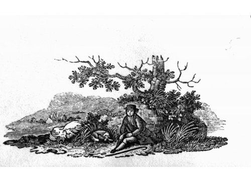 "Photo of Gerahmter Kunstdruck ""Man Seated by a Stunted Tree from 'History of British Birds and Quadrupeds'"" von Thomas Bewick East Urban Home Größe: Groß"