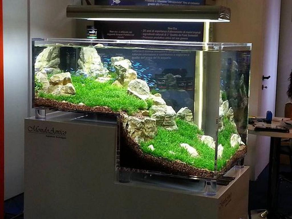 20 amazing indoor aquarium design ideas for inspiring home rh pinterest com