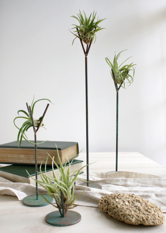 zen office decor. Turquoise Air Plant Stand - Tillandsia, Stand, Terrarium, Modern, Steel, Handmade, Zen, Office Gift, Desk Accessory, Wedding Decor | Plants, Zen I