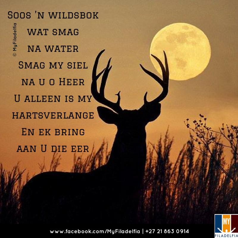 soos n wildsbok mp3