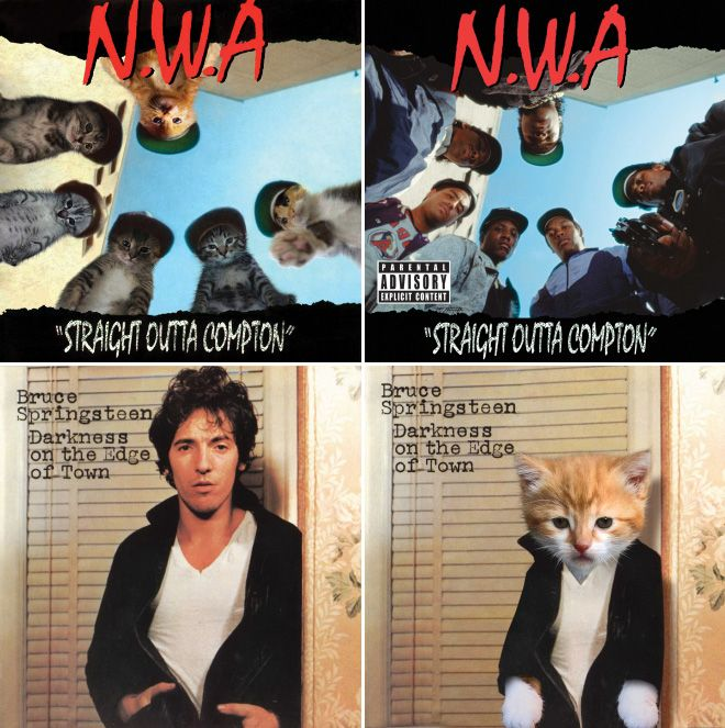 The Best Thing You Ll See Today Famous Album Covers Album Covers Cover
