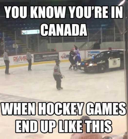 Of The Best Memes About Canada On The Internet 37 Of The Best Memes About Canada On The Internet37 Of The Best Memes About Canada On The Internet