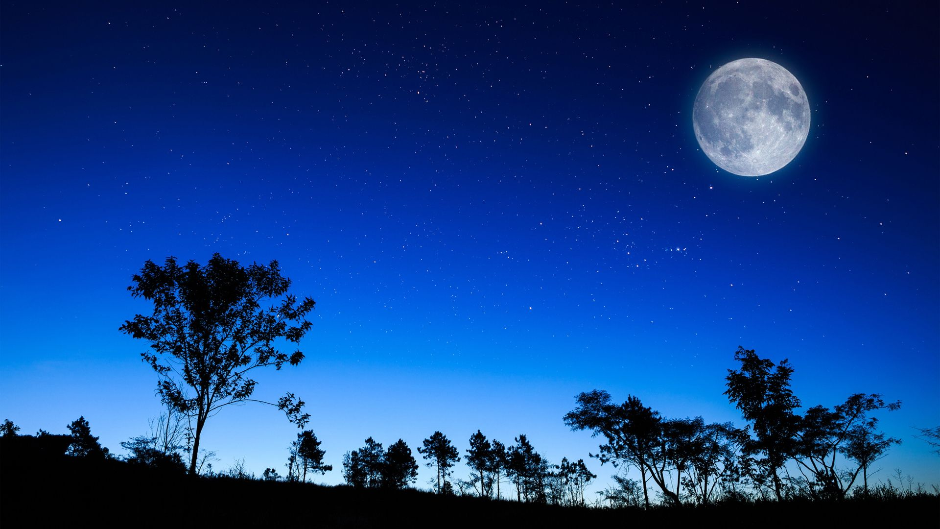 Cool Hd Wallpaper Night Full Moon And Beautiful Blue Sky Night Sky Moon Moon And Stars Wallpaper Sunrise Landscape