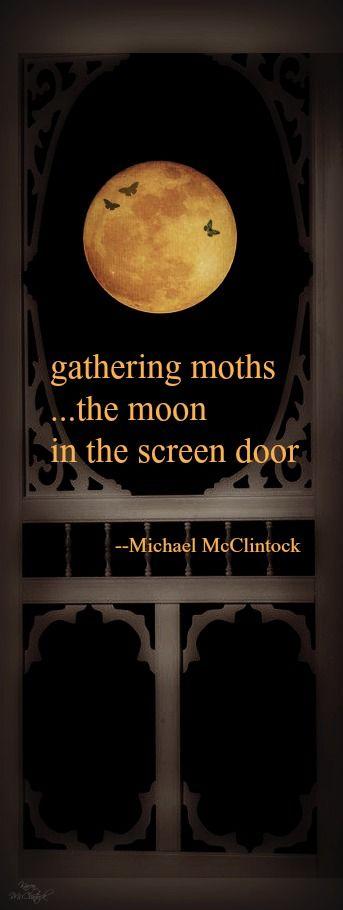 Haiku poem: gathering moths -- by Michael McClintock.