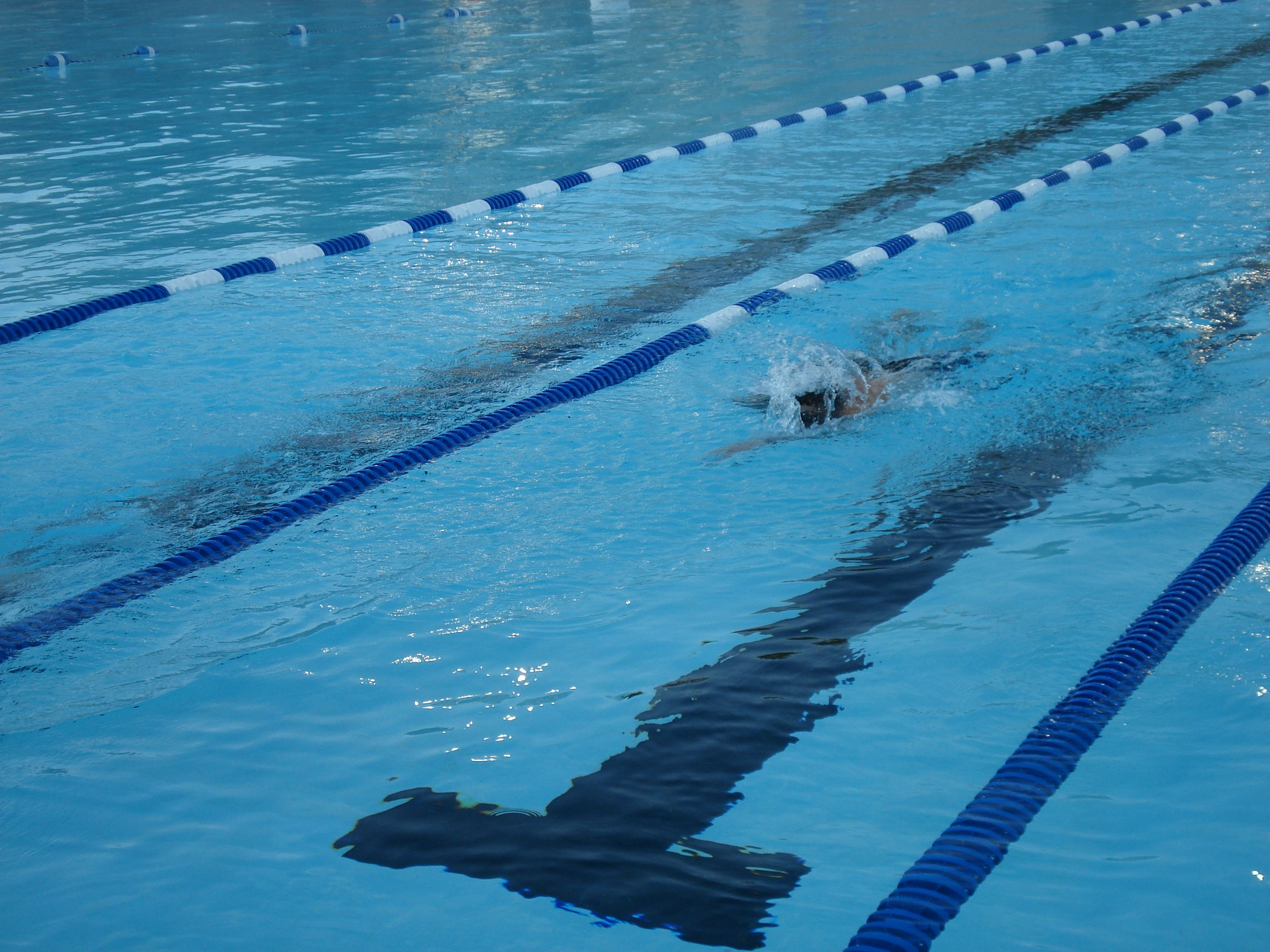 how to swim laps for beginners