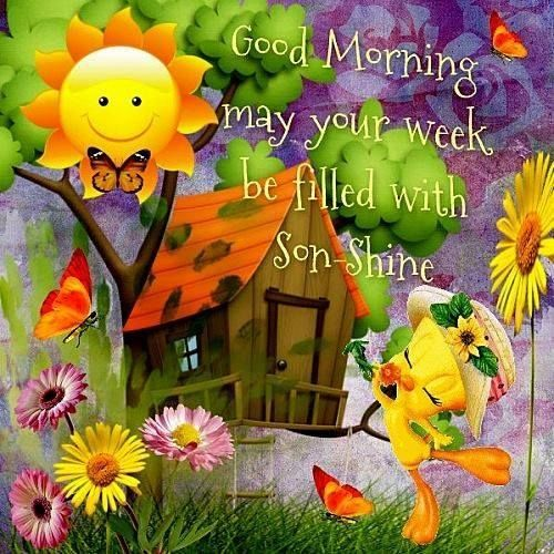 Good Morning May Your Week Be Filled With Son Shine Good Morning Good Morning Son Good Morning Greetings