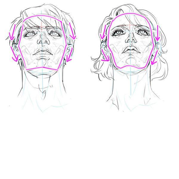 構造から理解しよう あおりと俯瞰 フカン のついた顔の描き方 いちあっぷ アートリファレンス 似顔絵 描画チュートリアル