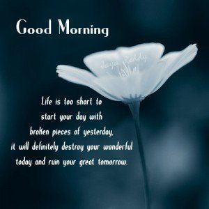 Good Morning Quote Facebook Good Morning Status Album Morning