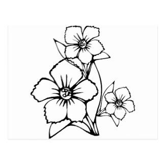 Image Result For Out Line Images Of Flowers Flowers