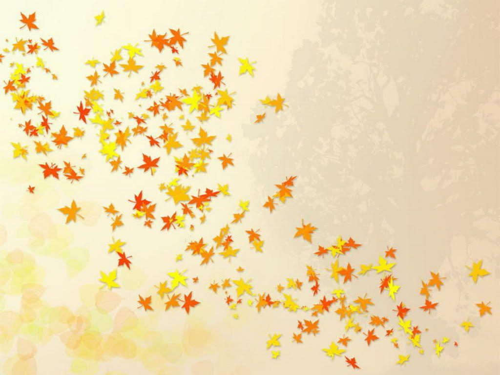 Cute Fall Wallpapers Cute Fall Wallpaper Fall Wallpaper Fall Desktop Backgrounds