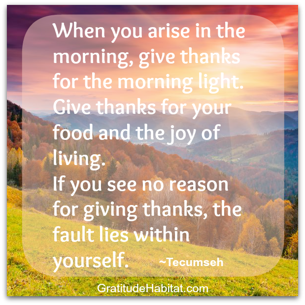 When You Arise In The Morning Give Thanks Wwwgratitudehabitatcom