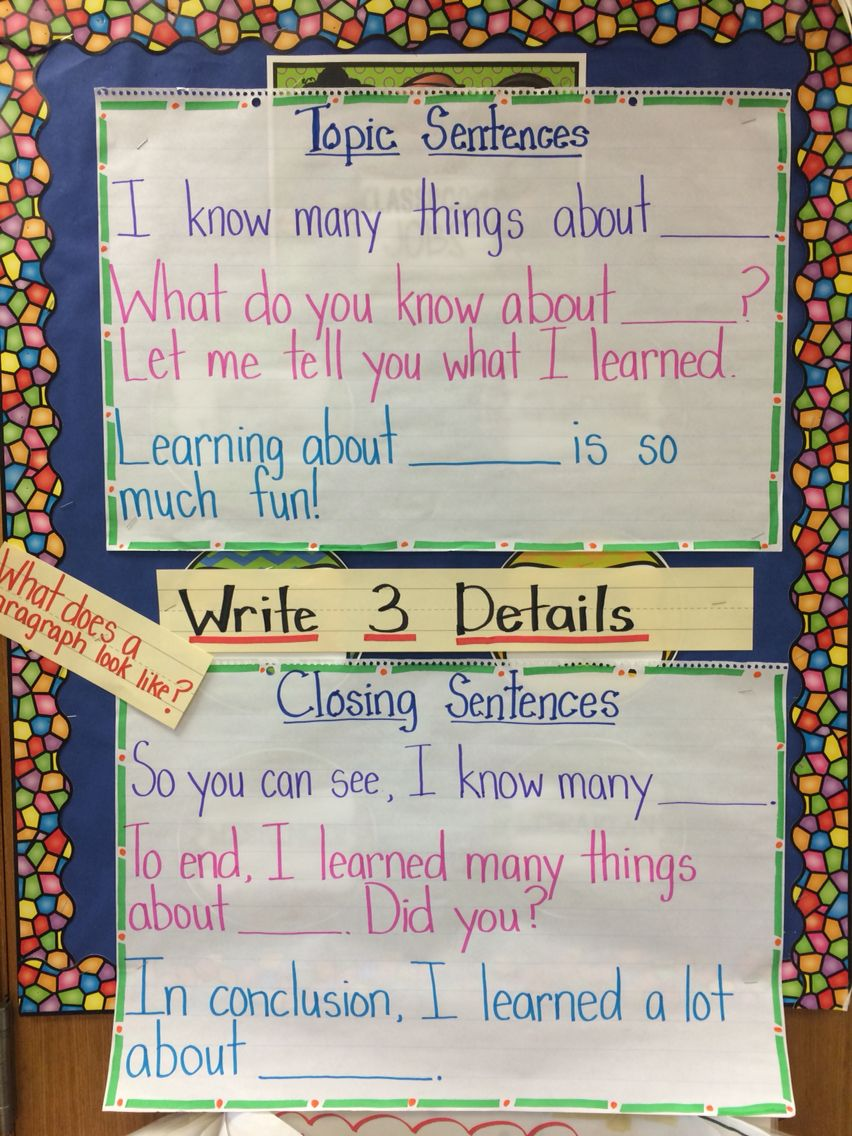 topic sentence and closing sentence anchor chart