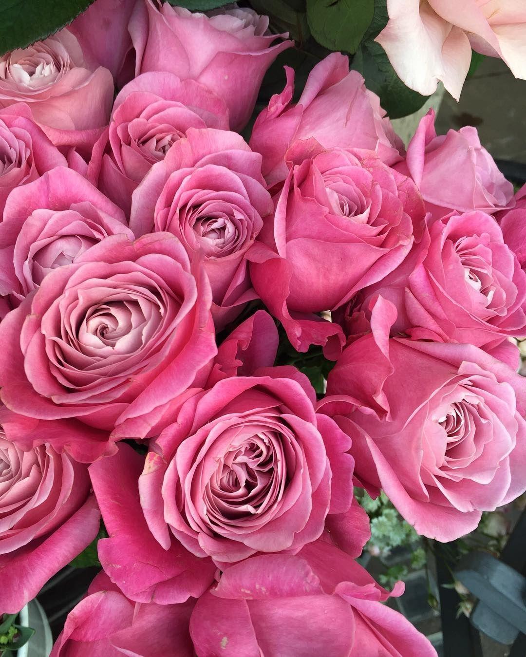 Back home 💖🌺💐 #homesweethome | Τριαντάφυλλα