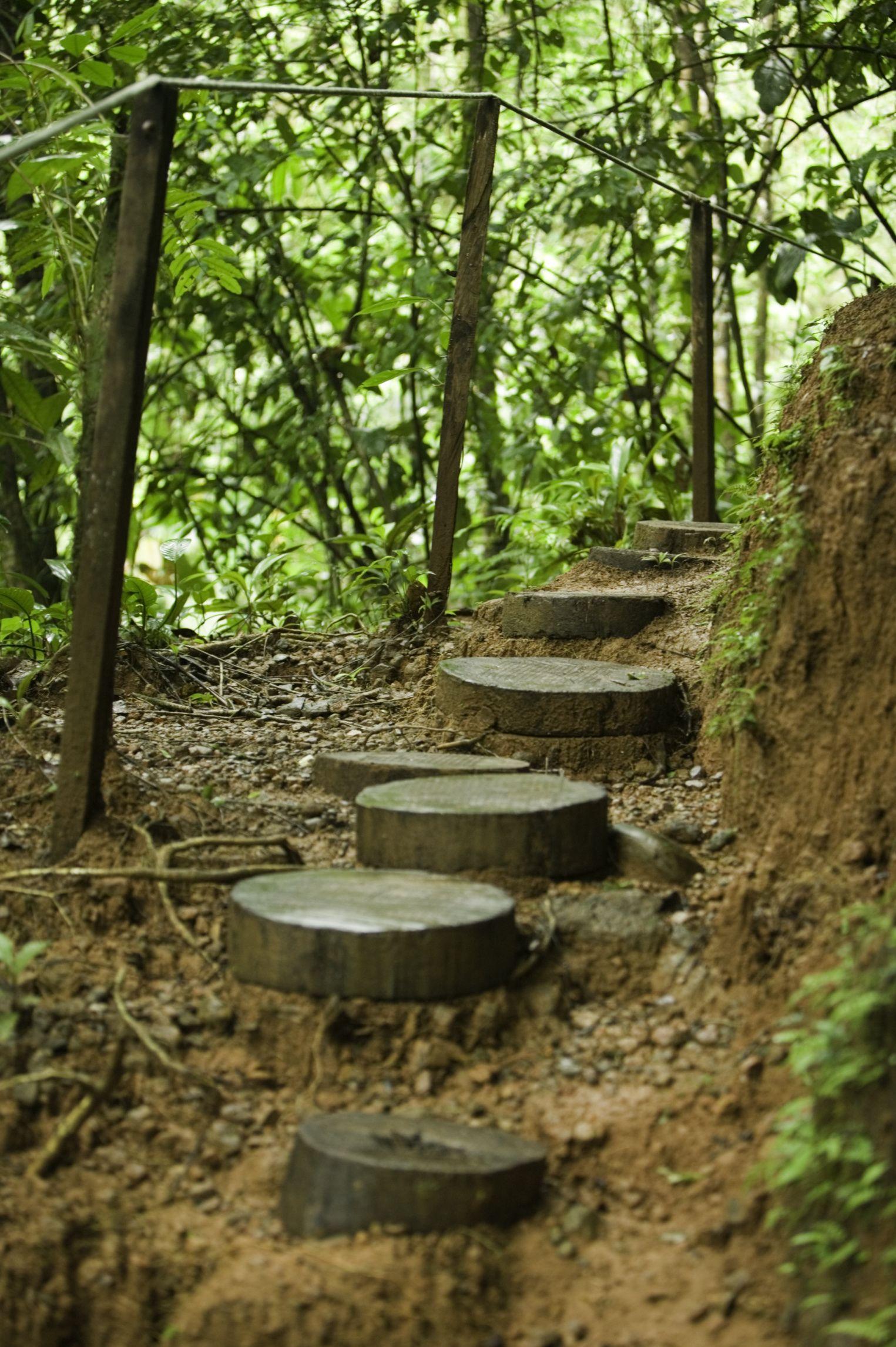 How To Build A Ground Level Wooden Walkway Garden Wooden Pathway