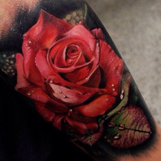 rosa y roció