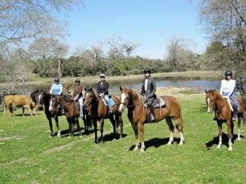 Trail Rides White Fences Equestrian