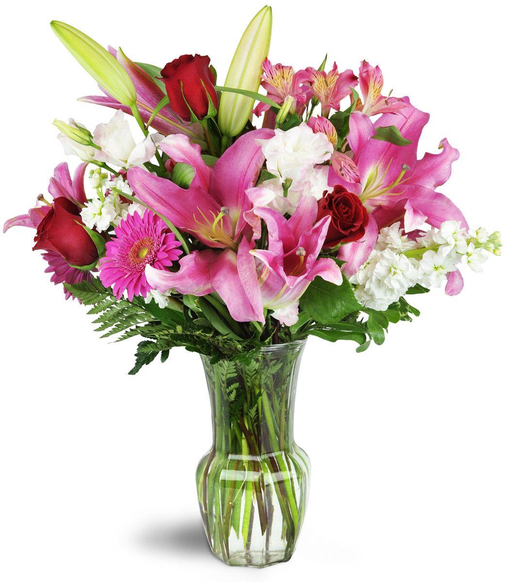 Blushing Heart Bouquet™ Hot pink gerbera daisies, red