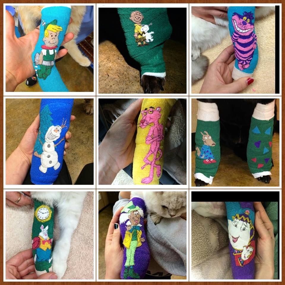 Posts About Vet Wrap Art On Vca Sfvs Vet Tech Humor Vets Vet Tech