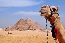 Egypt to ride camels and see the pyramids