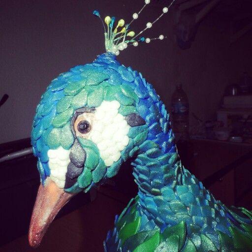 cabeza de pavo real en fonant