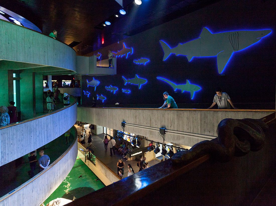 Manufacturer: Acolyte New England Aquarium   Boston, MA ...
