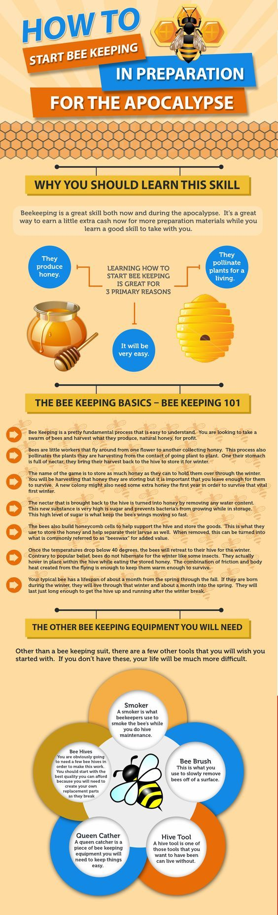 learning how to start beekeeping now can seriously improve your