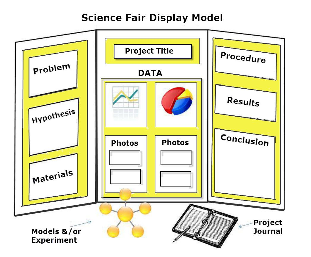 rd grade science fair project project below is one hate science fairs you need to this now