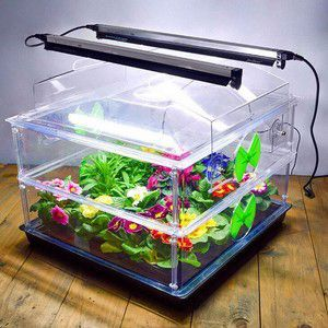 The Ultimate Vitopod Heated Propagator with 2 lights will give your seeds the best possible start and produce fast, healthy, reliable growth without legginess.