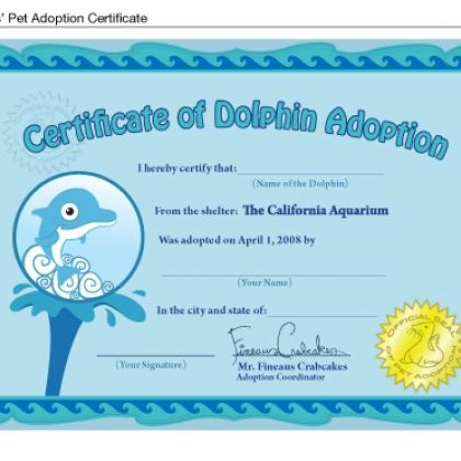 List of Synonyms and Antonyms of the Word: joke adoption certificate