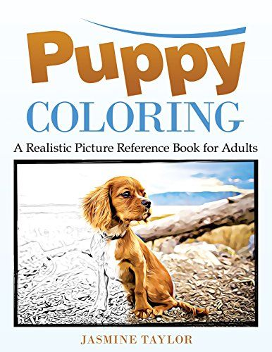 Pin by The Eclectic Lady on Eclectic: Amazon Colors | Dog ...