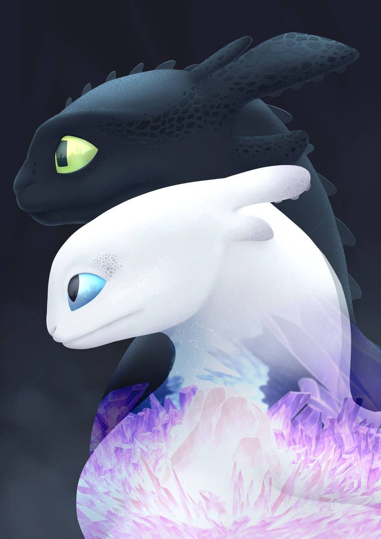 Light And Dark Discover You Duo By Https Www Deviantart Com Graphic Ginger On Deviantart How Train Your Dragon How To Train Your Dragon Light In The Dark