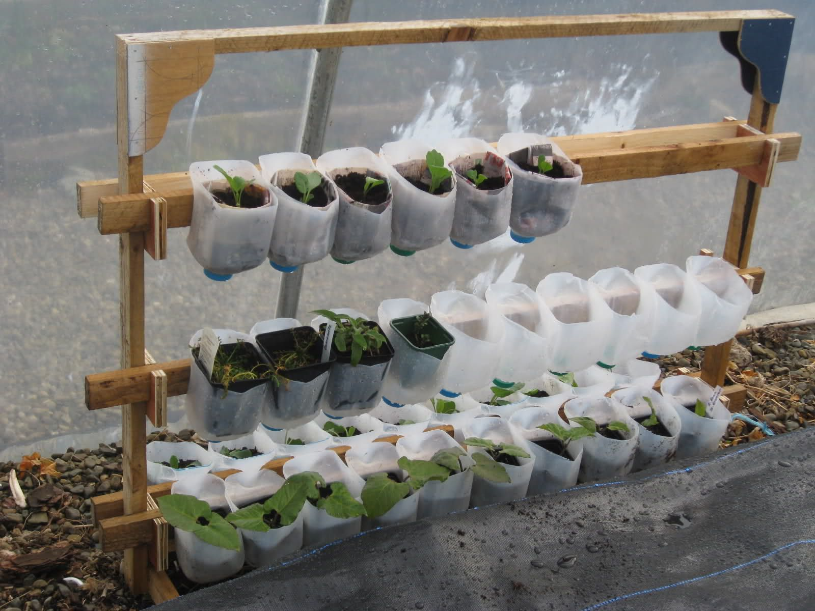 Flower Pots Recycled Materials