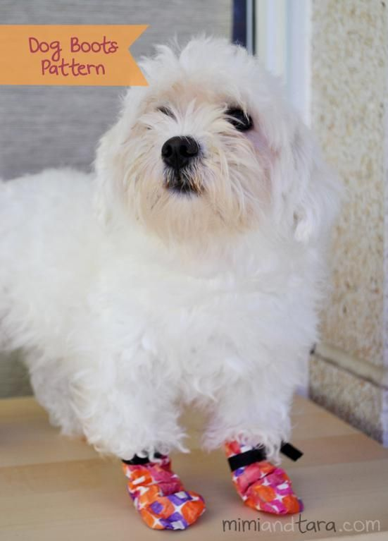 Free Sewing Pattern: Dog Boots | Sew it! | Pinterest | Mascotas ...